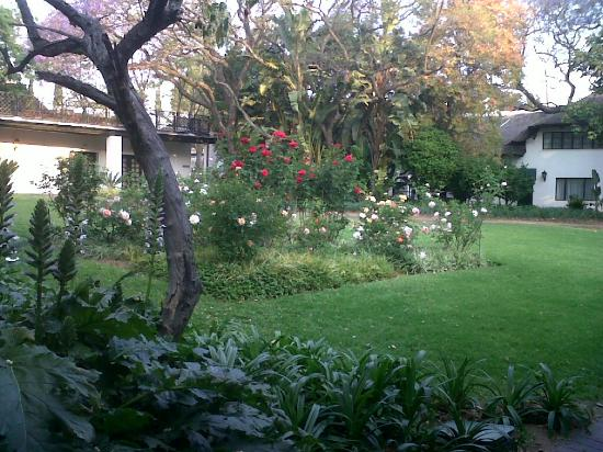 Indaba Hotel: Gardens