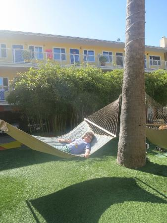 Hotel Del Sol, a Joie de Vivre hotel: Relaxing in the hammock at the Hotel Del Sol.