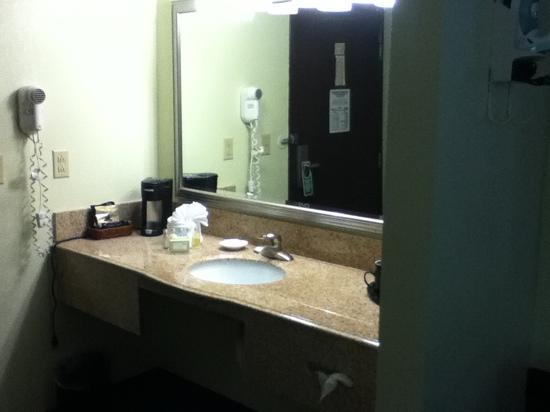 Alexis Inn & Suites Nashville Airport Opryland: separate sink area. the toiletries were big and high quality