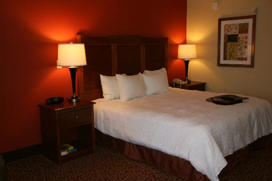 Hampton Inn Chicago-Carol Stream: King Room