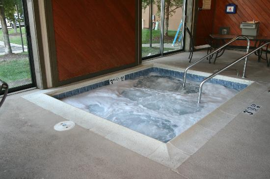 Hampton Inn Chicago-Carol Stream: Whirlpool Spa