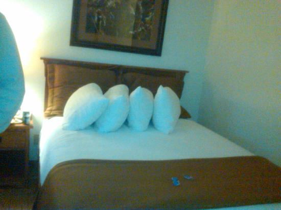 BEST WESTERN PLUS By Mammoth Hot Springs: Bed