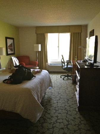 Hilton Garden Inn Danbury : King Bed room