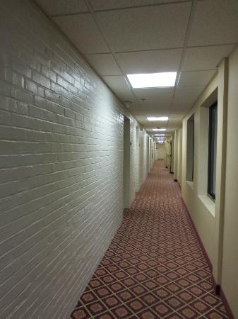 Holiday Inn Express Boston / Waltham: Old section...painted brick