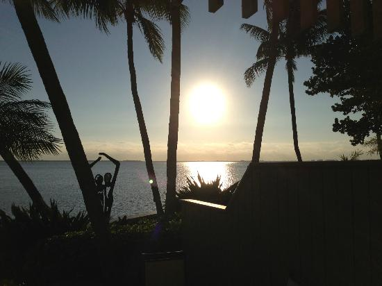 The Grove Isle Hotel & Spa: Sunrise over Biscayne Bay
