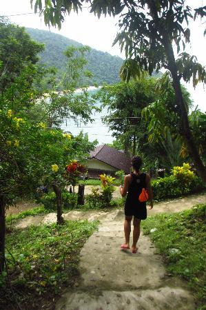 Bamboo Bay Resort: Path from the room to the restaurant with the bay in the background