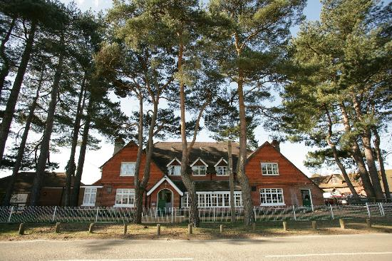The beaulieu hotel new forest hotel reviews tripadvisor - Hotels in brockenhurst with swimming pools ...