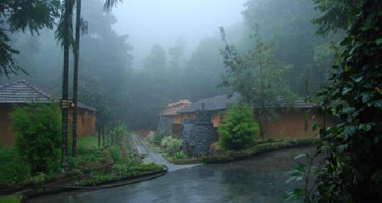 Misty Morning Picture Of Blue Ginger Wayanad Resorts Vythiri Tripadvisor