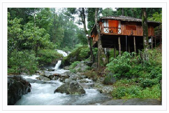 Trekking Picture Of Blue Ginger Wayanad Resorts Vythiri Tripadvisor