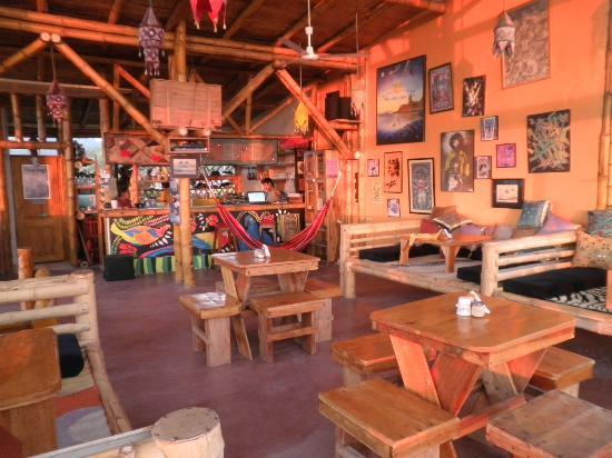 Images about surf themed restaurant on pinterest