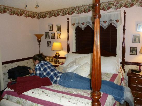Acorn Bed and Breakfast at Mills River : Relaxing in the Rose room