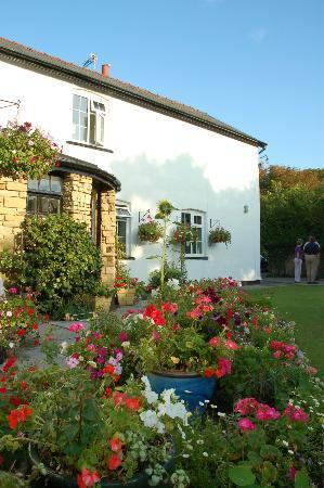 Brooklands Cottage B&B