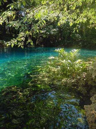 Oyster Island Resort: Matavula Blue Hole