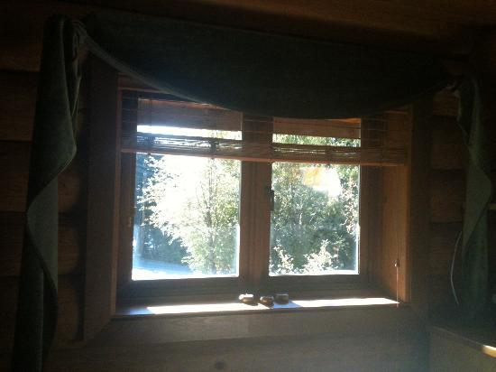 WilderQuest Cabin Retreat: View from Bed