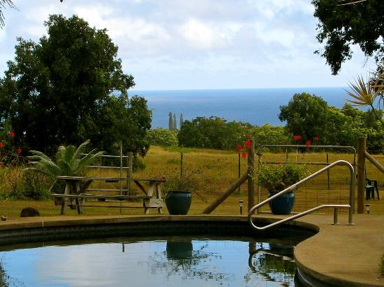 Hale Luana: view of ocean in distance from pool