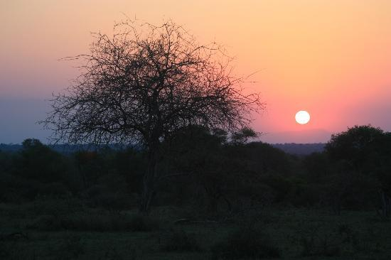 Lion Sands River Lodge: One of many stunning sunsets viewed having a 'sundowner'