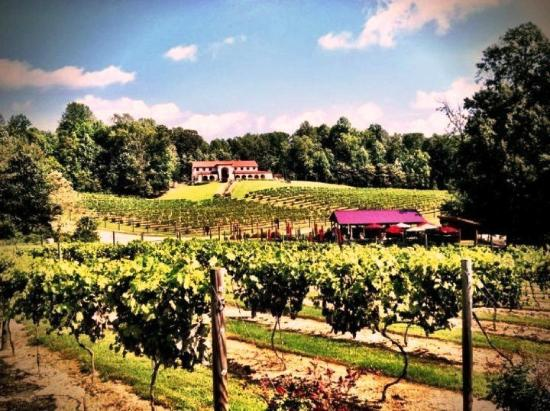 Running Hare Vineyard Prince Frederick Md Hours Address Top Rated Attraction Reviews
