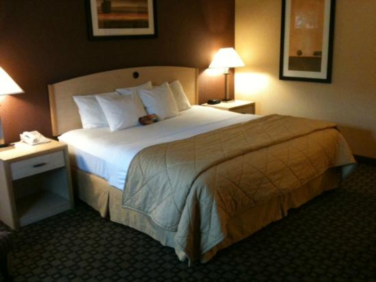 Photo of Comfort Inn Loveland