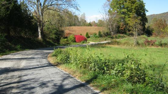 Lovingston, : Winery entrance