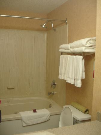Ramada Canmore: wonderful one person jetted tub! awesome!
