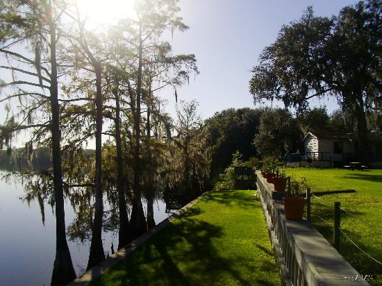 Suwannee Gables Motel and Marina: Beautiful River view