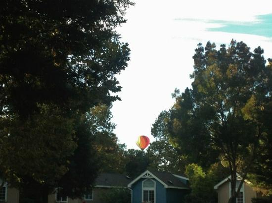 RiverPointe Napa Valley Resort: Hot air balloons fly over every morning...
