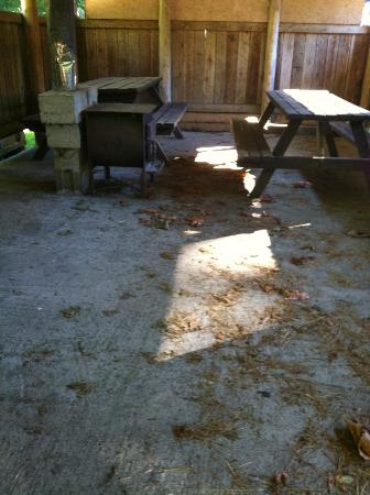 Cedar Grove RV Park & Campground: supposed kitchen area.... looks like it hasn't been cleaned ever