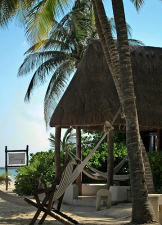 Las Palapas Hotel: Beachfront Cabana
