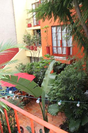 The Red Tree House: patio central