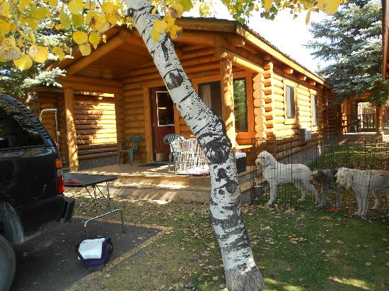 Cowboy Village Resort: Our Cabin, set up for the dogs