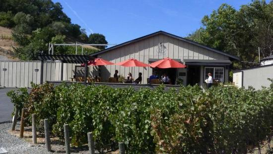 Baldacci Vineyards Small Family Winery Picture Of