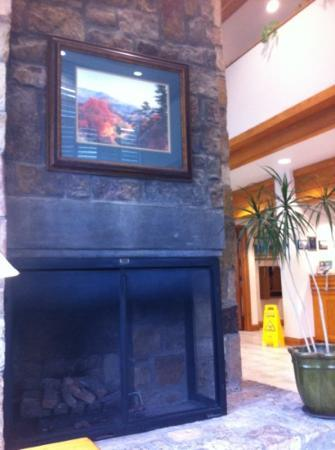 Greystone Lodge at the Aquarium: lobby