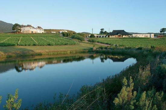 The Twelve Apostles Hotel and Spa: Bouchard Finlayson Vinyard