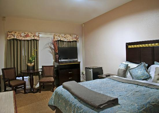 Harborview Inn and Suites: Single Suite