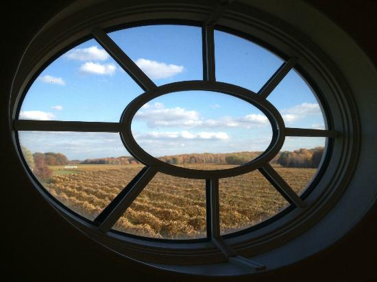 The Polly Harper Inn: View to Vineyards from Cupola at top of Polly's Room
