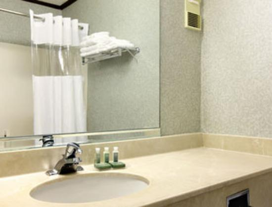 Baymont Inn & Suites Greensboro / Coliseum: Bathroom