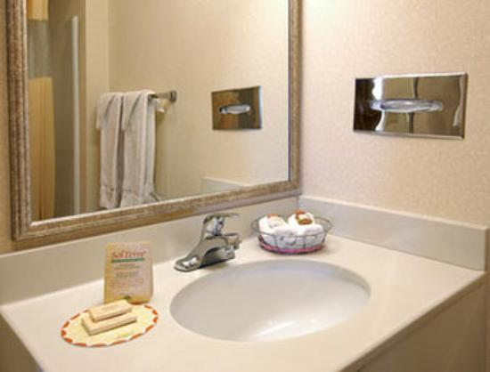 Days Inn Raleigh: Bathroom