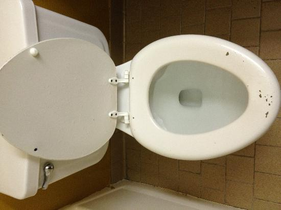 Country Hearth Inn & Suites Abilene: Chipped toilet seat