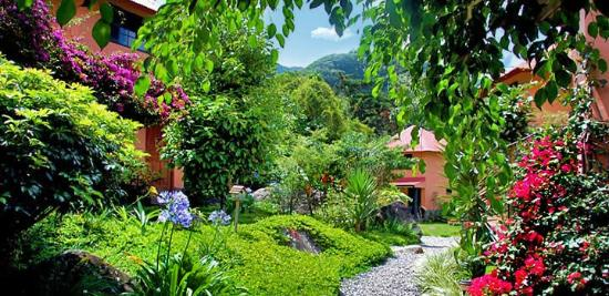 Boquete Garden Inn: Take a stroll in our gardens