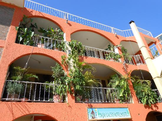 Photo of Bajas Cactus Hotel Y Hostel Cabo San Lucas