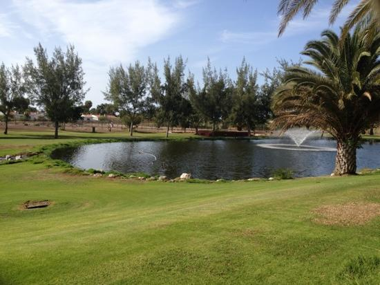 View behind our bungalow if golf course picture of suite for Bungalows jardin dorado