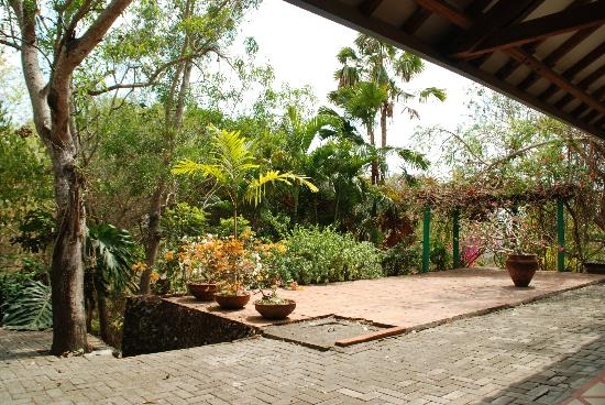 Udayana Kingfisher Eco Lodge: The Garden