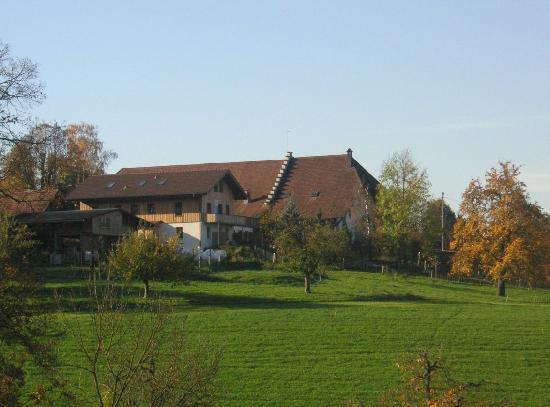 Farm Battwil (Mathys Farm)