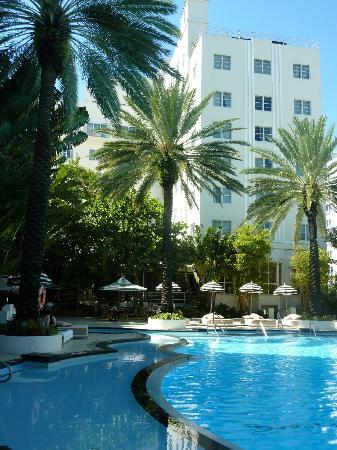 The Raleigh Miami Beach: Hotel back view
