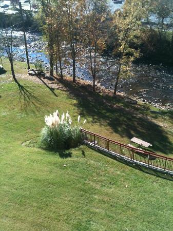 RiverStone Resort: balcony view of river