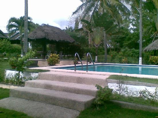 Photo of Sunshine Pension House Moalboal