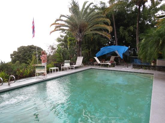 Camp Aloha Bed & Breakfast: swiming pool area