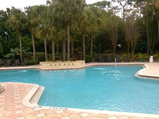 DoubleTree Suites by Hilton Hotel Orlando - Lake Buena Vista: pool