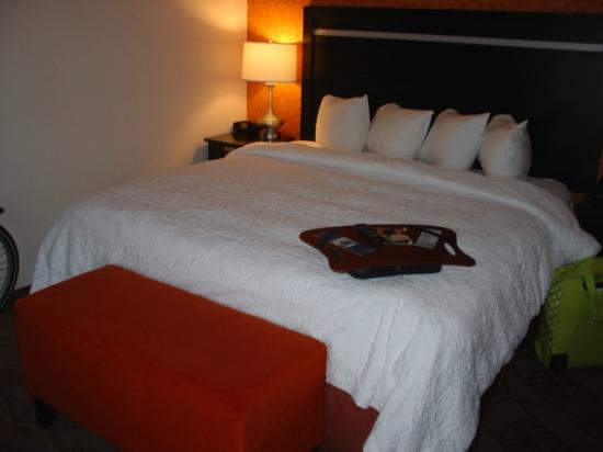 Hampton Inn &amp; Suites Chattanooga / Downtown: room