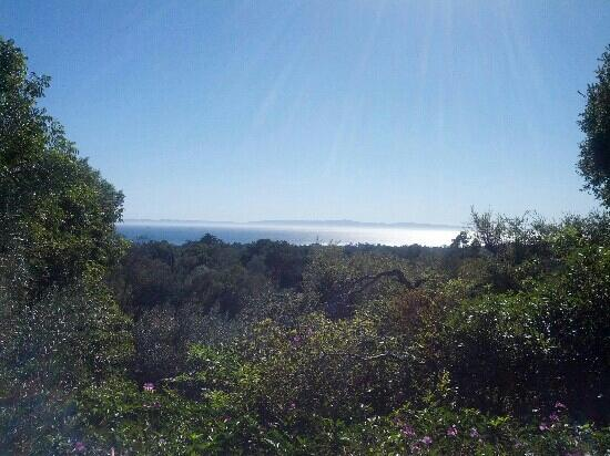 San Ysidro Ranch, a Ty Warner Property: View from the famous Kennedy Cottage